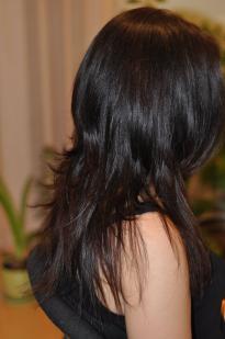 Plaukų kirpimai